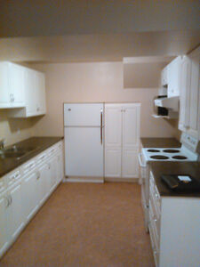 Two Bedroom Basement Suite in Londonderry Area - RENOVATED!