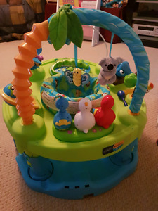 Animal planet exersaucer