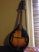 Johnson mandolin