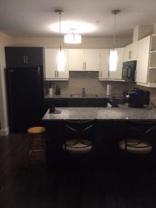 Larry Uteck 1 Bedroom+Den Sublet