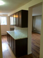 Very Nice 2-BR Apt Near Univ, Renovated Large, Bright, No Carpet