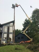 TREE REMOVAL.. Our Equipment Even Amazes Us!  Check Out The Pics
