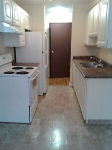 Feb Free March1/2price 3 bdrm Apt in Leduc beautifully Renovated