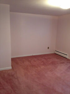 Bright & spacious 2 bedroom basement apartment in Cowan Heights. St. John's Newfoundland image 2
