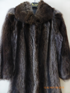 Fourrure manteau chat sauvage