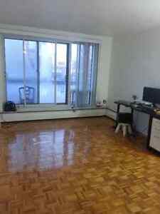 Studio for rent in Downtown-Du fort