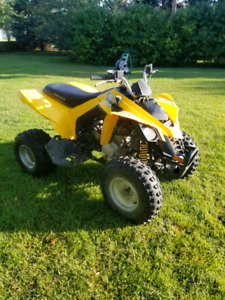 Can am ds 250 2006