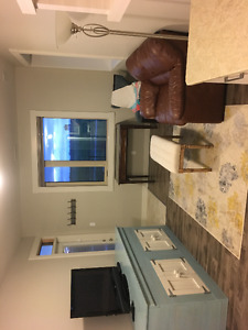 Beautiful one bedroom suite for June, July, Aug.