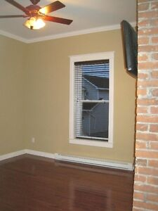 Beautiful downtown apartment  with PARKING ! St. John's Newfoundland image 11
