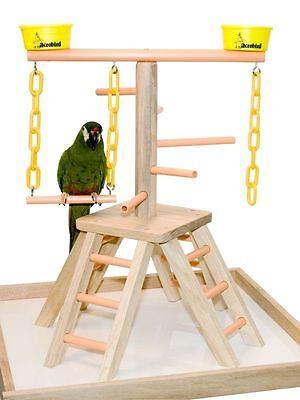 "Parrot Pet Bird Playland Table Top Perch Play Gym 20"""