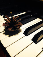 Now Accepting Fall Registrations for Piano and Violin!