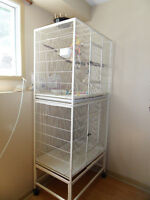 PARROT'S TWO LEVELS CAGE IN GREAT CONDITION