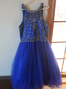 Royal Blue Sparkly Dress
