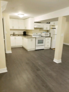 3 BEDROOM NEWLY RENOVATED BASEMENT FOR RENT IN TRENTON