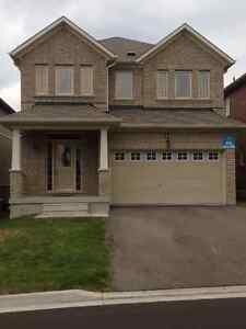 4 BR Detached HOUSE with walk-out basement - Richmond Hill