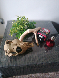 Accessories for lizard/exotic animal vivarium