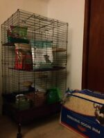 Chinchilla cage and supplies