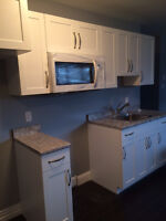 Beautiful New one Bedroom All Inclusive!  Evergreen area