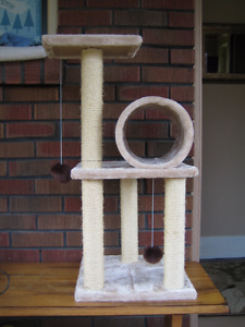 Unloved cat tree looking for deserving kitty
