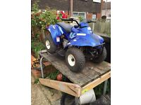 Eton rascal quad bike