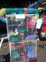 Ferret  chinchilla cage