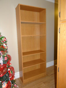 Large Shelving Unit