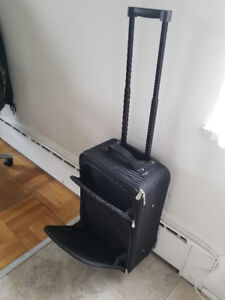 Small carry on travel bag - $25