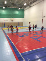 Basketball or volleyball court time $25/hr rent gym! Raptors! Go