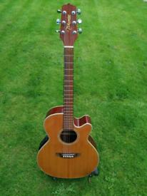 Acoustic Guitar Takamine
