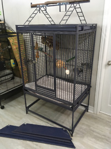Avian Adventures & Kings Cages *New Package Deal May 22*