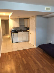 Lower level bachelor style apartment $950 all inclusive