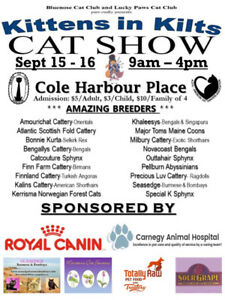 CAT SHOW - COME AND MEET SOME AMAZING BREEDERS