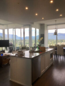 Fully Furnished 2 Bed/ 2 Bath Sub Penthouse Condo ( Brand new )
