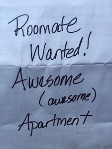 Roommate Wanted - Deluxe Apt in the Sky (UofA/Hosp/Whyte Ave)