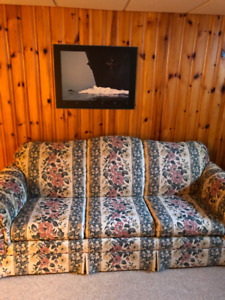 queen size sofa bed/couch