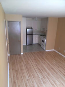 Spacious Bachelor – Trinity Area – All Included