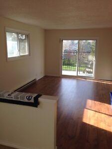 2bdrm rental (cheap, nice and spacious) - Madoc