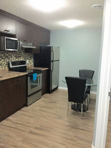 Furnished Room with walkin in 2 bedroom suite in southside dec-1 Edmonton Edmonton Area image 8