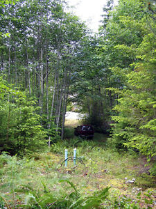 Gold River B.C. Large House Lot for Sale $69,900 Campbell River Comox Valley Area image 7