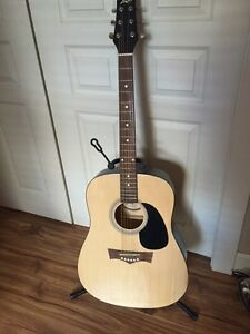 Peavy acoustic guitar