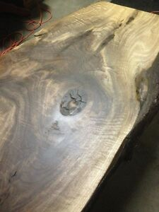 Black Walnut Live Edge Desk /Coffee Table Completed Top Kitchener / Waterloo Kitchener Area image 2