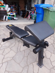 Bench press exercise gold gym like new