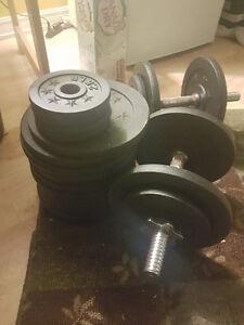 2 haltères ajustables / 2 adjustable dumbells (5 à 100lbs)