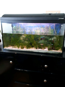 aquarium 32 gallons + support a vendre
