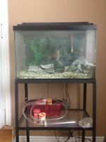 55 gallon fish tank with all accessories
