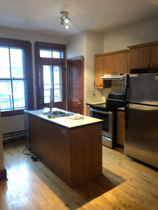 Large 3 1/2 & 5 1/2 for rent in Plateau Mont-royal