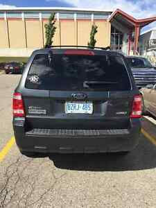 SAFETIED AND ETESTED 2008 Ford Escape XLT SUV Cambridge Kitchener Area image 4