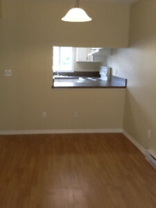 Renovated 3 bed townhouse DEC 1 PENTICTON
