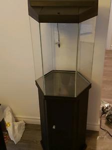 Aquarium 28 gallon hexagonal tout inclus