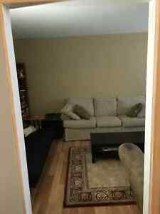 2 Bedroom Basement Apartment between Avalon Mall and MUN St. John's Newfoundland image 5